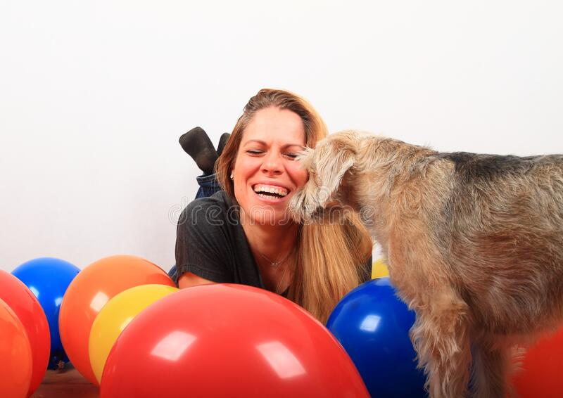 Laughing woman attacked by loving dog royalty free stock images