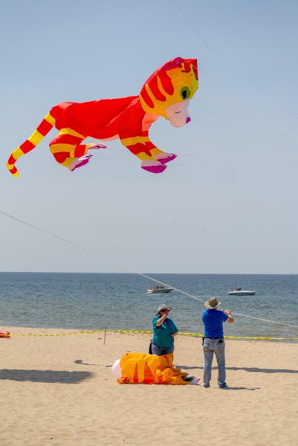 Free Launching Kitten Kites At Grand Haven Michigan Kite Fest Royalty Free Stock Images - 82529859