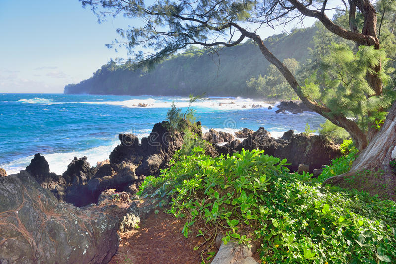 Laupahoehoe Point Beach Park