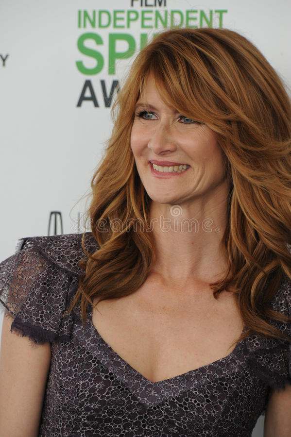 Laura Dern stock foto