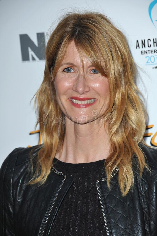 Laura Dern. LOS ANGELES, CA - APRIL 20, 2015: Laura Dern at the premiere of \'Just Before I Go\' at the Arclight Theatre, Hollywood stock image