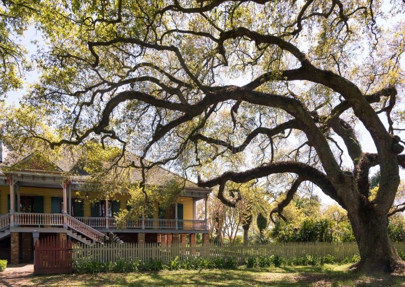 Laura Plantation nya Orlean fotografering för bildbyråer