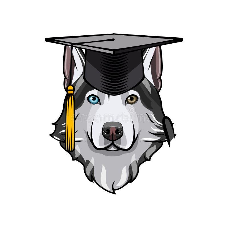 Laureato del husky siberiano Cappello del cappuccio di graduazione Razza del cane Vettore illustrazione di stock
