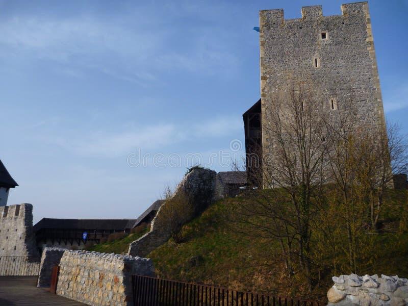 Laureato medievale di Stari del castello in Celje in Slovenia immagini stock