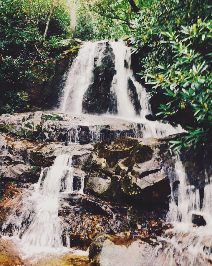 Laurel Falls imagen de archivo libre de regalías