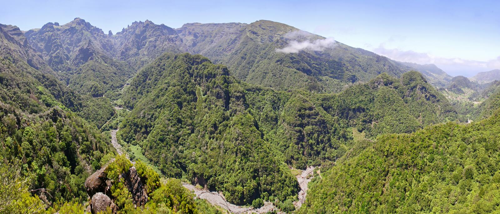 Laurel forest on Madeira island, Portugal. Panoramic view of hills with Laurel forest on Madeira island, Portugal. Laurel forest also called laurisilva on royalty free stock photos