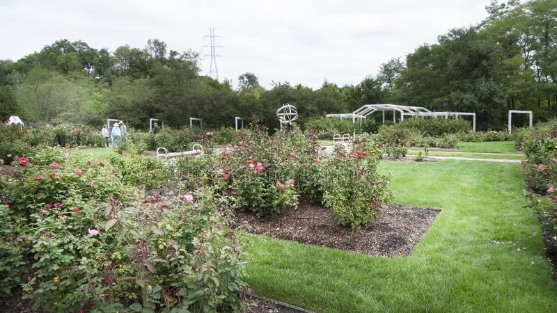 Lauritzen庭院,奥马哈,内布拉斯加,玫瑰园 库存图片