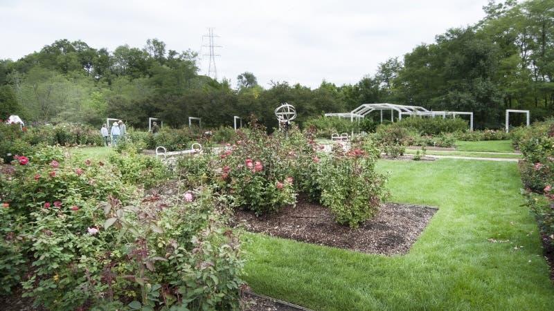 Lauritzentuinen, Omaha, Nebraska, Rose Garden stock afbeelding
