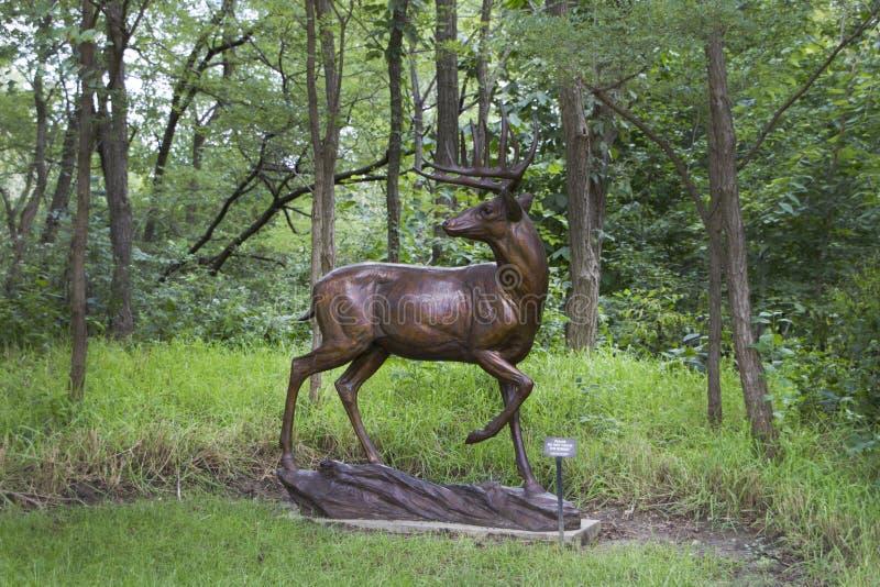 Lauritzentuinen, Omaha, Nebraska, standbeeld van een hert in openlucht royalty-vrije stock foto's