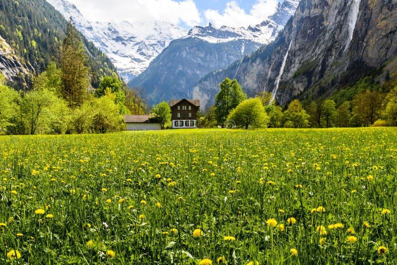 Lauterbrunnen, Suíça, panorama, casa agradável fotos de stock royalty free