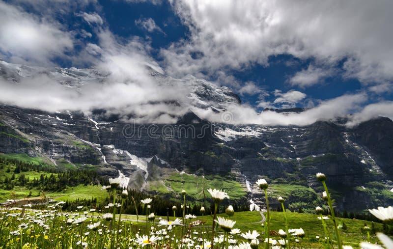 Lauterbrunnen Swizerland Kleine Scheidegg fotografia stock libera da diritti