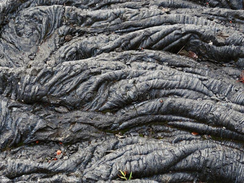 lava arkivbilder