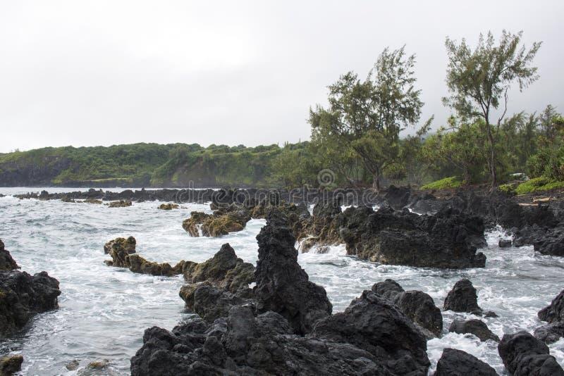 Lava Coastline avec les vagues et les arbres se brisants image libre de droits