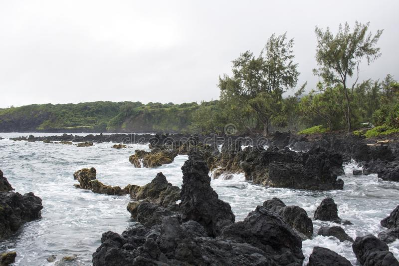 Lava Coastline com ondas e as árvores deixando de funcionar imagem de stock royalty free