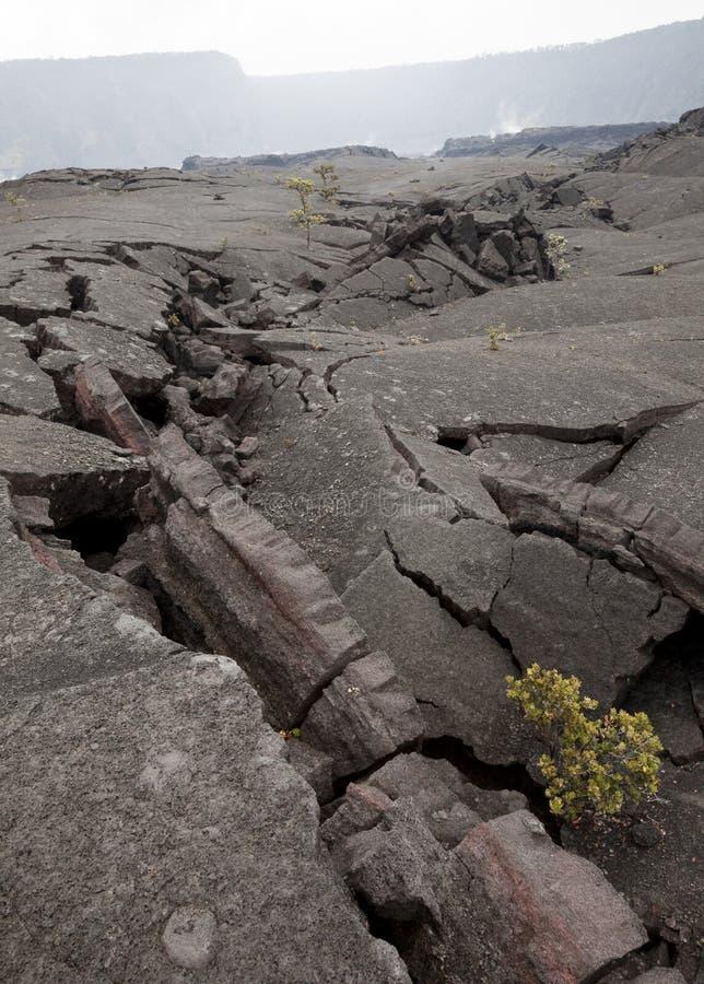 Lava Cracks. Cracks in the foggy Kilauea Iki crater, Hawaii Volcanoes National Park, Big Island, Hawaii, USA stock photos