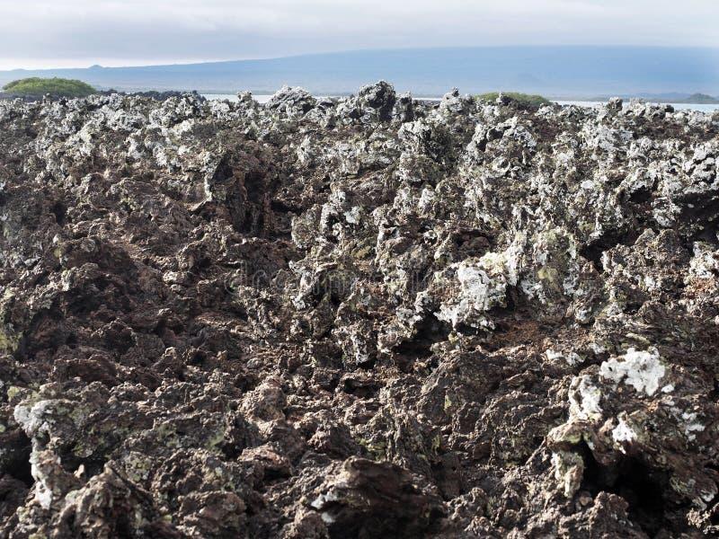 A lava enchida na ilha Islote Tintoreras comemora a alunagem, Galápagos, Equador fotografia de stock