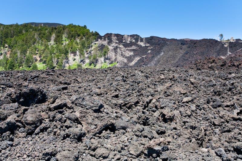 Lava endurecida na inclinação do vulcão de Etna, Sicília fotografia de stock