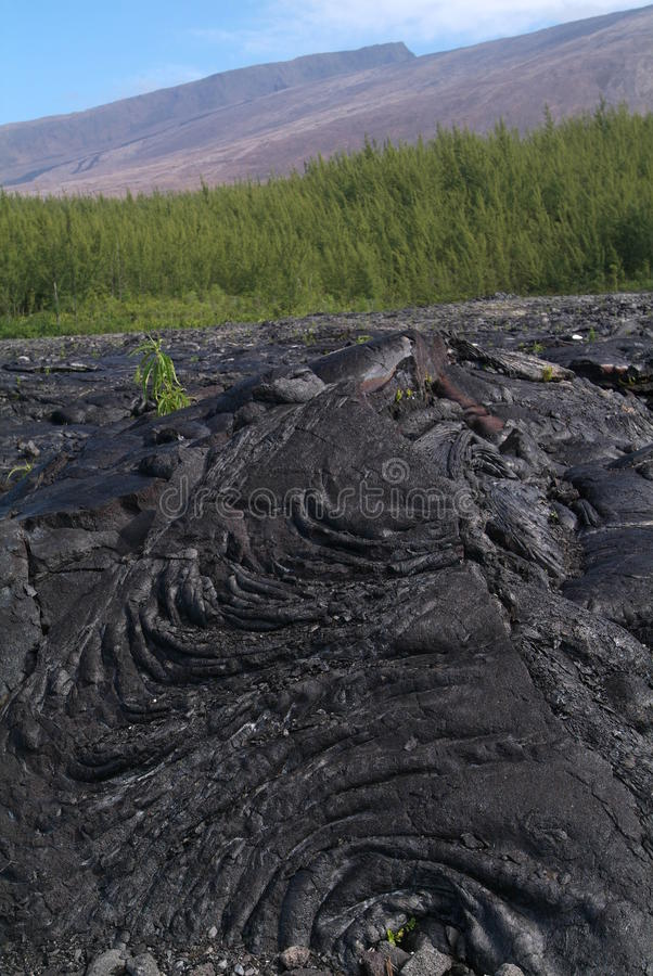 Download Lava Eruption At La Fournaise On Reunion Island Stock Photo - Image: 24392012