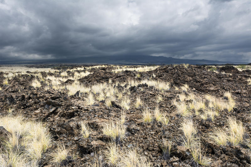 Lava Field herbeux photographie stock