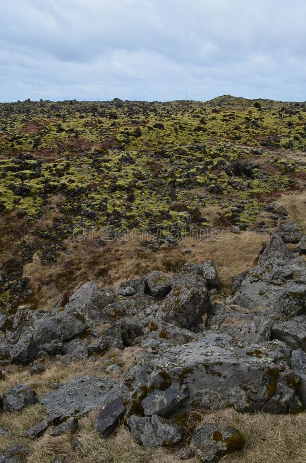 Lava field with black volcanic rocks and moss stock photography