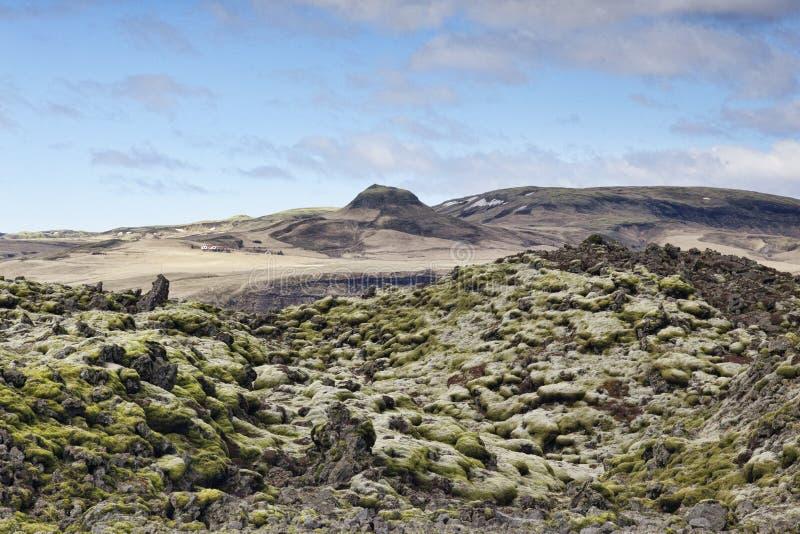 Lava Field in Skaftareldahraun, Zuid-IJsland stock afbeeldingen