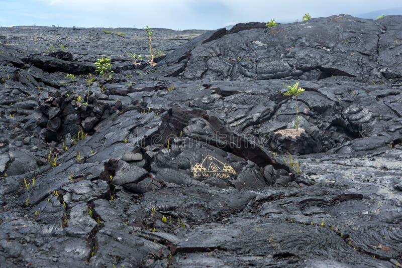 Lava Field sur la grande île d'Hawaï images stock