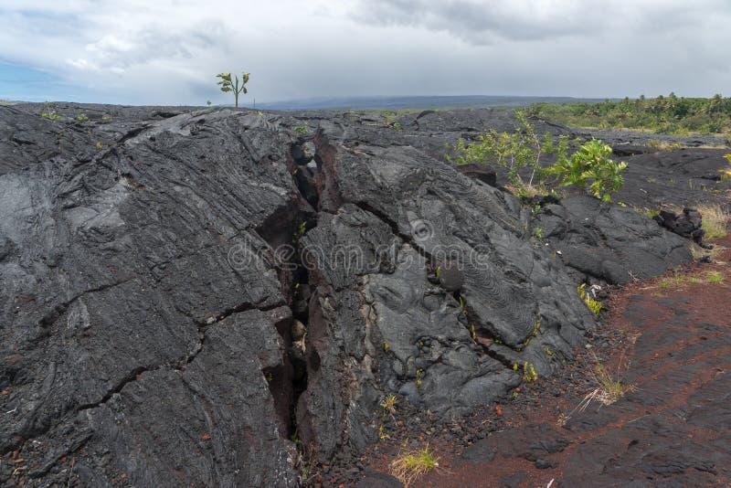 Lava Field sur la grande île d'Hawaï image stock