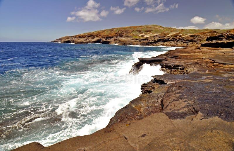 Download Lava Rock Shoreline Hawaii stock image. Image of holiday - 14230045