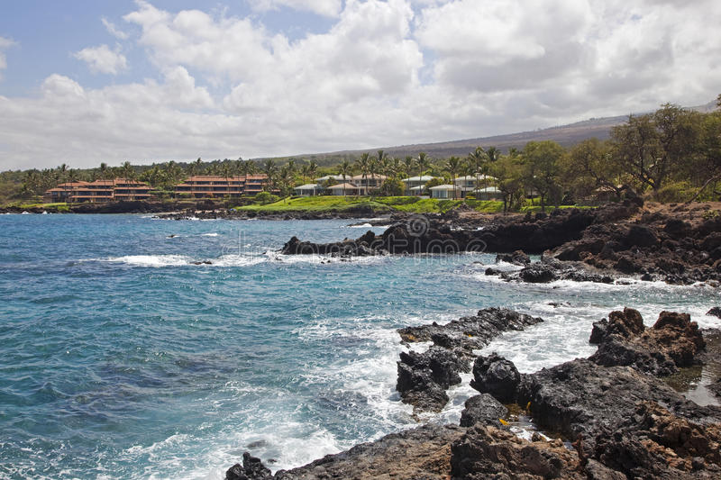Download Lava Rock and Surf stock image. Image of palm, windy - 26107823