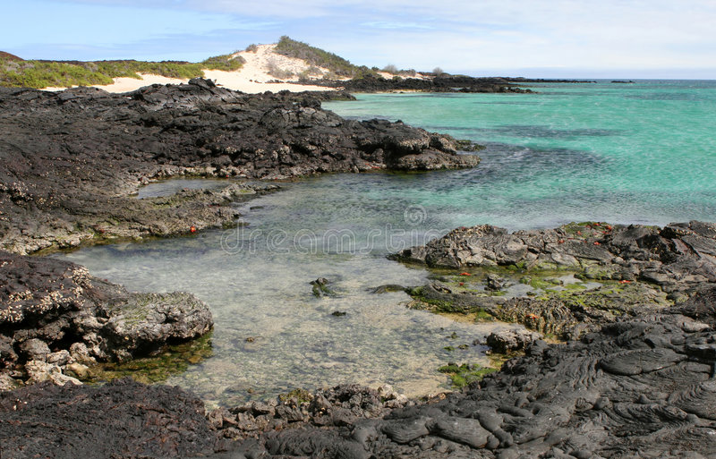 Lava Shoreline Stock Photography