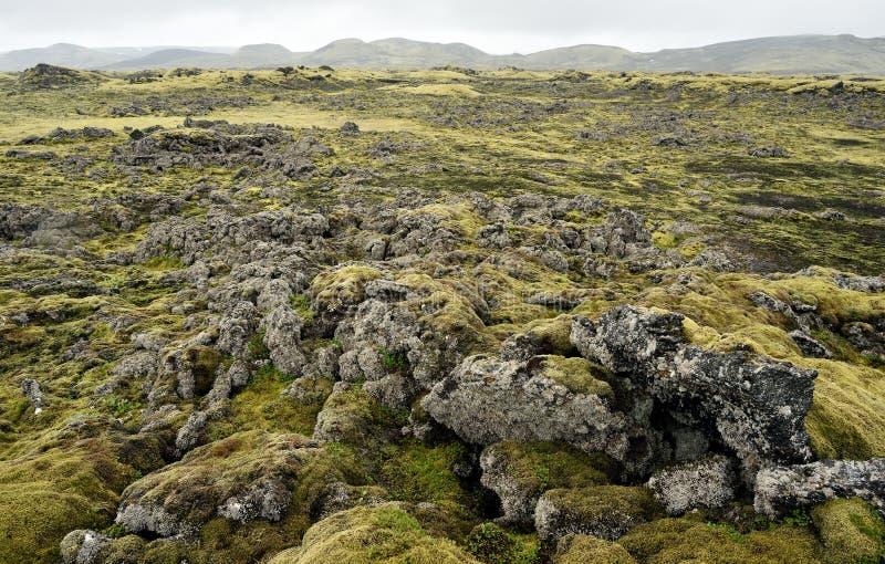 Lava terrain in Iceland. Rocky terrain. royalty free stock photo