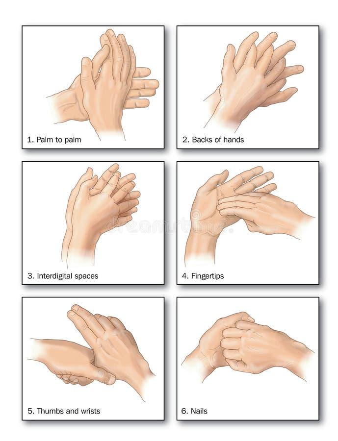 Lavado de la mano ilustración del vector