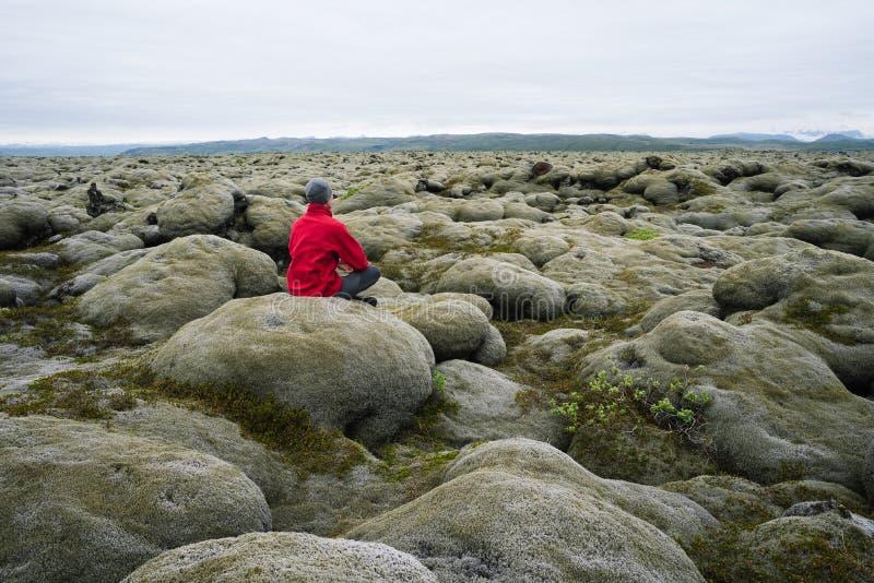 Lavafält med mossa, Island royaltyfria bilder