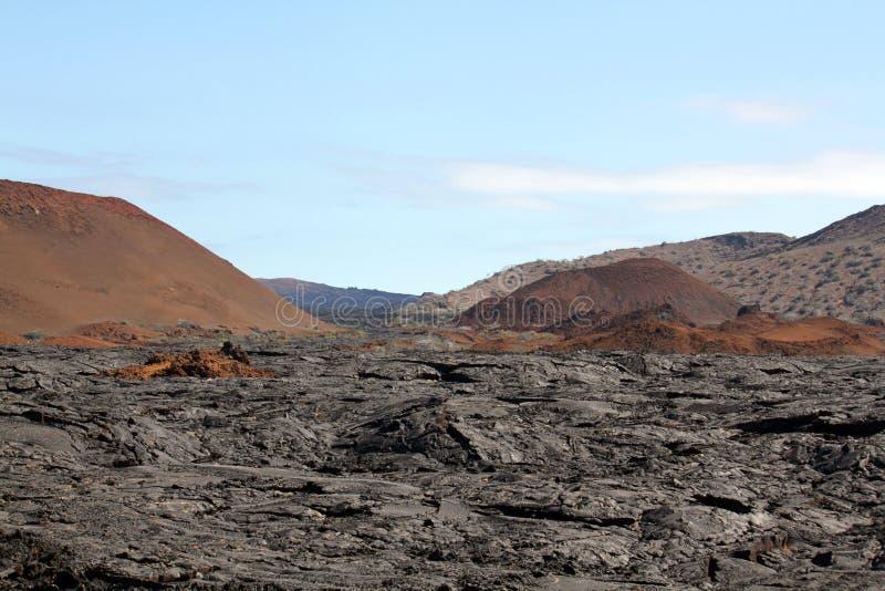 Lavagebied op Isla Santiago (de Galapagos) stock foto
