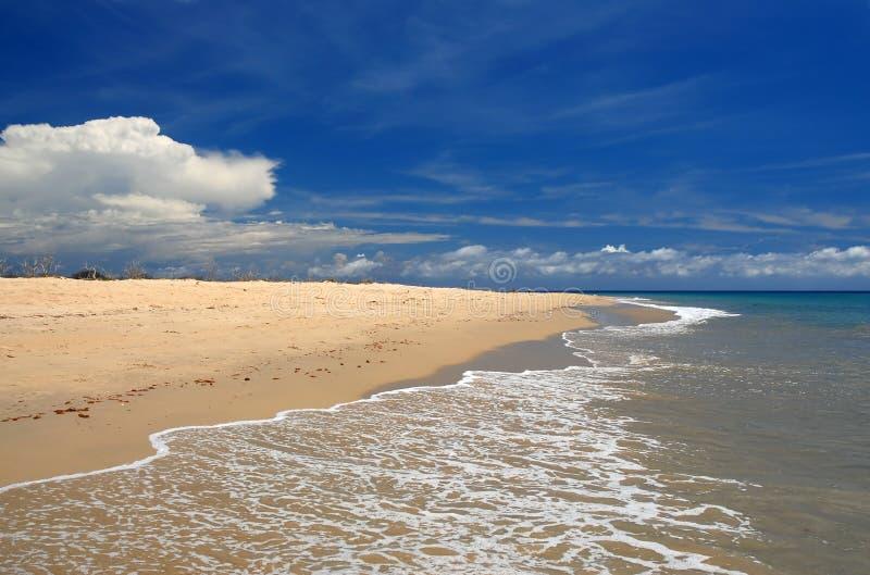Lavagem política na praia do Cararibe tropical imagem de stock