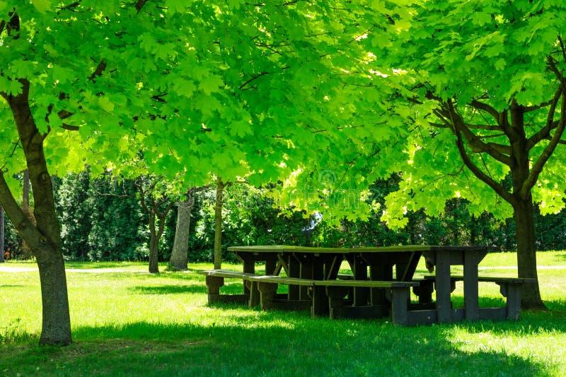 Laval, Quebec, Canada: June 02, 2018. A picnic table. Laval, Quebec, Canada: June 02, 2018. A large picnic table with gorgeous park landscape, awaiting visitors stock image