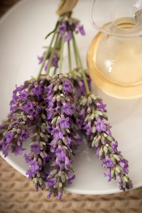 Lavanda aromatherapy foto de archivo libre de regalías
