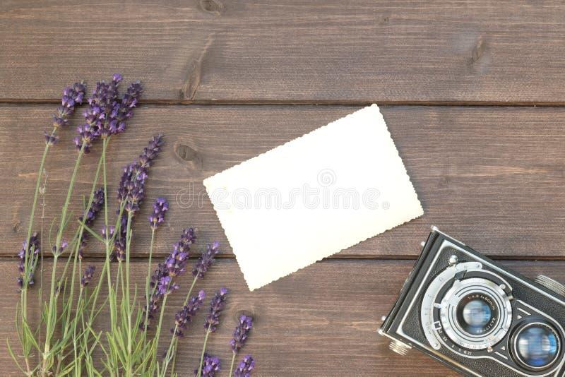 Lavanda, foto d'annata e vecchia macchina fotografica immagine stock libera da diritti