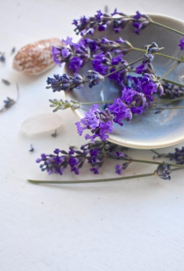 Lavanda fresca floreale in una ciotola immagine stock libera da diritti