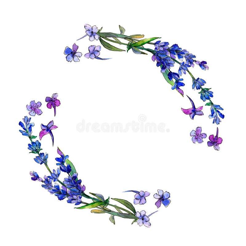 Lavanda violeta Flor botánica floral Cuadrado del ornamento de la frontera del capítulo ilustración del vector