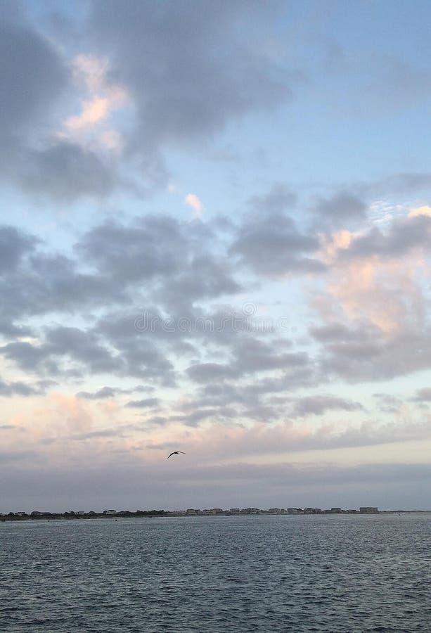 Lavandar niebieskie niebo zdjęcie stock