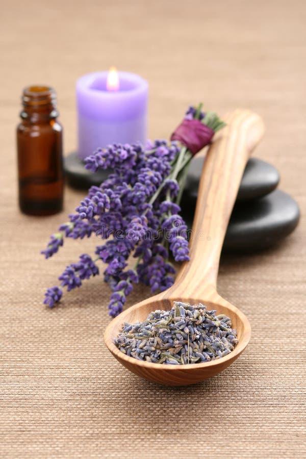 Lavande aromatherapy photos stock