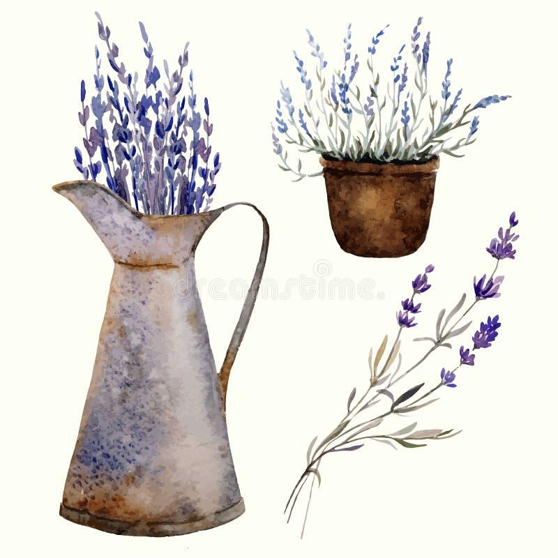 Lavande decor1 de la Provence illustration de vecteur