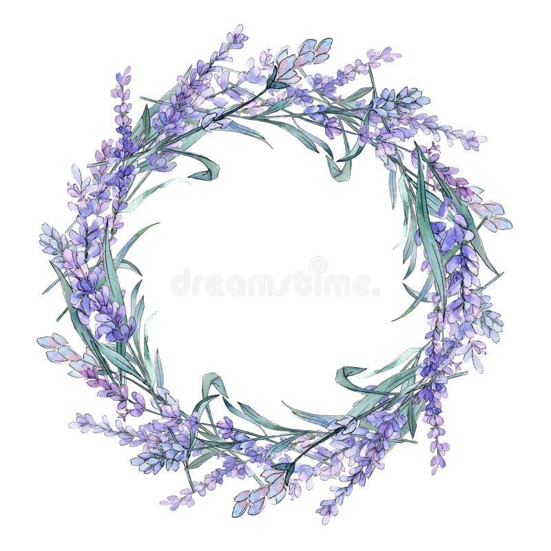 Lavande pourpre Fleur botanique florale Wildflower sauvage de feuille de ressort Place d'ornement de frontière de vue illustration stock