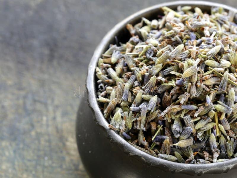 Lavande violette parfumée de macro tir photos libres de droits