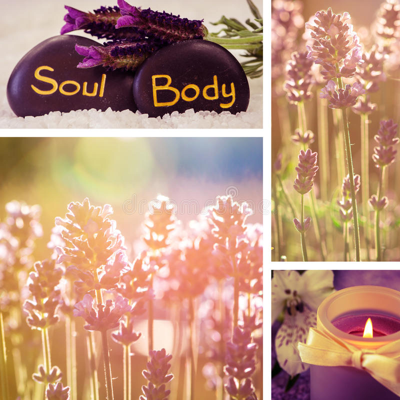 Lavander flower collage. Collage of black lava stones with words and lavender flower royalty free stock photo