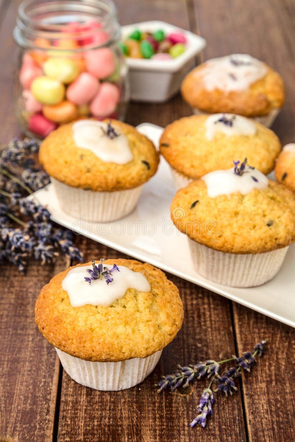 Lavander muffins zdjęcie royalty free