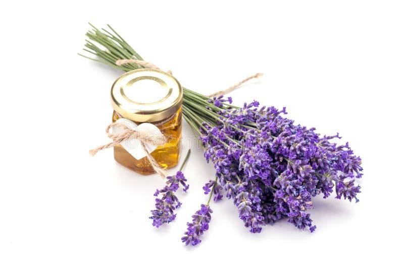 Lavander z aromatycznym olejem zdjęcie royalty free