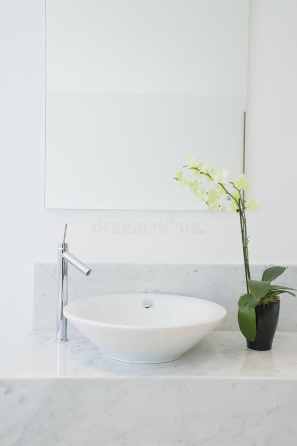 Lavandino e pianta in vaso in bagno immagine stock - Pianta bagno ...