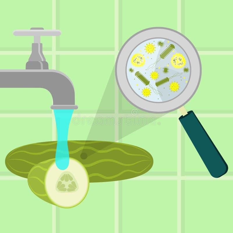 Lavare cetriolo contaminato royalty illustrazione gratis